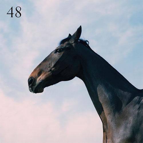 MOSS KENA - 48